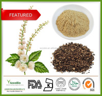 High quality Hot sale Black Cohosh Extract, Black Cohosh Extract powder, Triterpene Glycosides