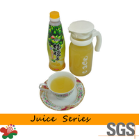 Fruit Juice Concentrate Juice Drink Orange Peel Juice