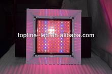 Factory pretty competitive price 8W/10W/24W /36W / 48W / 108w led panel led grow light