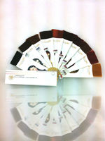 Hair color chart, hair color swatch book