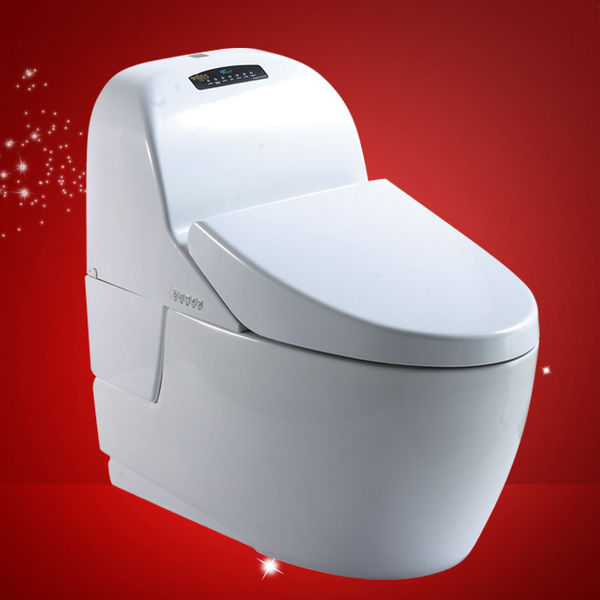Africa Cheap Two Piece Bathroom Wc Toilets Color