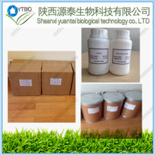Nicotinamide riboside and pregabalin powder Anastrozole (Arimidex) CAS120511-73-1 POWDER IN TOCK