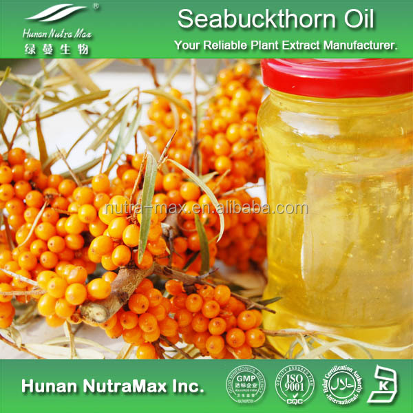 Top Quality Sea Buckthorn Berry Seed Oil / Seabuckthorn Fruit Oil