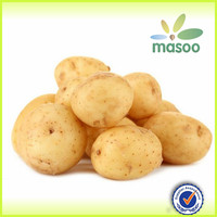 Fresh Potatoes, fresh vegetables from China, good quality
