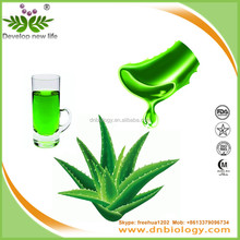 100% Natural Aloe Vera Leaves Extract 20% Aloin Competitive Price