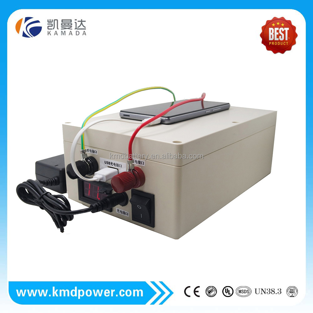 Rechargeable EV Li-Ion 12V 100AH LiFePo4 Lithium Battery Pack for UPS Solar System