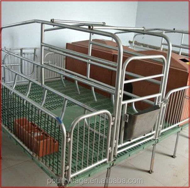 High Quality Stainless Steel Pig Feeder/Nursery Bed/Pig Fattening Pen(Pig Equipment)