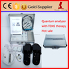 Updated AE organism electric analyzer quantum therapy medical body analysis machine