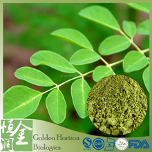 Best Price GMP Certified 10:1 Morgina Leaf Powder