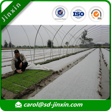 Non Woven Fabric Manufacturer for Agriculture Farming in Fruit Tree Covers/Weed Control Mat/Greenhouse/Banana Bags