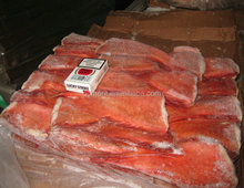 Frozen A Red fish fillet
