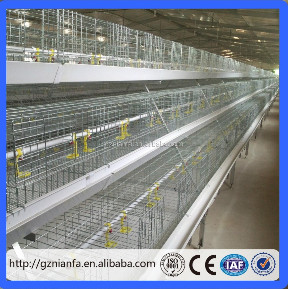 layer egg chicken cage/poultry farm house shed design(Guangzhou stock)