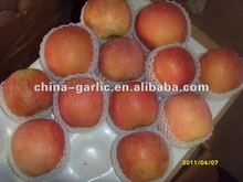 China Cheap Apple ( 2011 Price )