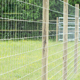 Grassland fence and farm guard agricultural field fence lowes hog wire farm fencing