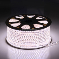 RoHs cetificate hot products 12-24V for 60leds SMD3528 LED strips lights