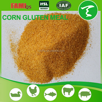 Bone and Meat Meal 50% for animal feed