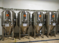 100L turnkey micro beer brewing system