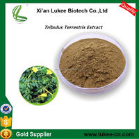 Saponin Supplements Tribulus Terrestris extract powder with Saponin
