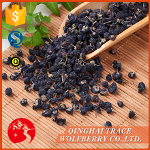 Factory directly wholesale high quality black goji berry from China