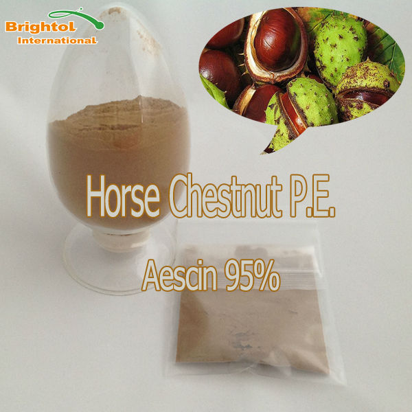 100% nature Horse Chestnut powder extract