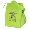 insulted bottle cooler bag / promotional lunch cooler bag / wholesale cooler