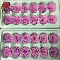 Best selling mini preserved rose ecuador