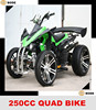 /product-detail/eec-250cc-quad-atv-60069505928.html