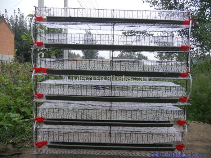 CE 6 Layers cage capacity 400 quail cage for sale commercial quail cages / bird cage /chicken cage quail farm equipment HJ-QC400