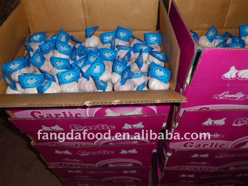 10kg Loose carton packing carton garlic/fresh garlic