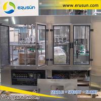 Full automatic pet bottle fruit concentrated juice hot filling production machine