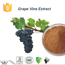 free sample HACCP FDA certified 100% natural HPLC grape vine extract 5% resveratrol viniferin