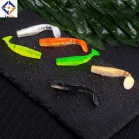 T Tail Soft Worm 65mm 70mm Paddle Tail Lure wobbler fishing soft lure for bass Fishing Bait Grub Swimbait