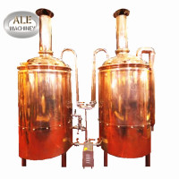 Professional 500l Craft Micro Beer Brewing Equipment
