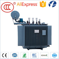 Manufacture Guaranty 3 Year Safety Used Oil Immersed 300KVA 11KV Transformer Specification