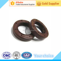 NBR/Viton/PTFE Oil Seal Rotary Shaft Seal for pakistan market