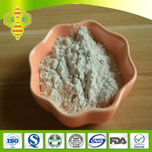 SHENGYUAN natural raw wholesale Bee honey powder