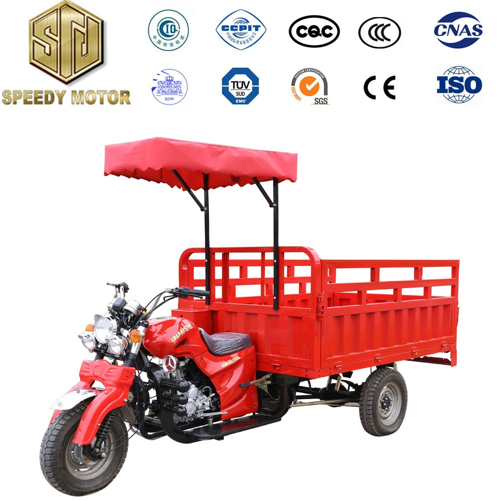Factory direct sale new coming 3 wheels petrol cargo tricycle