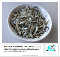Small Size Dried Salted Anchovy Fish
