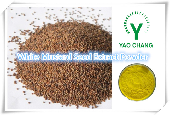 Free samples mustard seed extract powder/white mustard extract