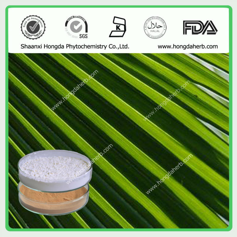 Natural Saw Palmetto Extract Powder Total Fatty Acids Min25%