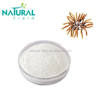 100% natural extract cordycepin 98% powder CAS: 73-03-0