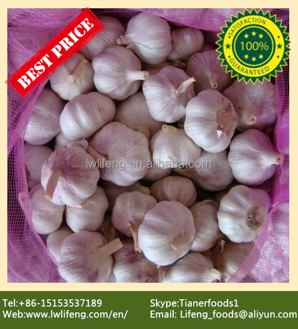 Best Price and Quality 2016 New Crop of Chinese White Garlic / Fresh Garlic