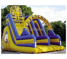 china inflatable, giant hippo Inflatable slide for adult,commercial inflatable water slides