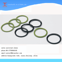 DIN3869 ED Rubber WASHER