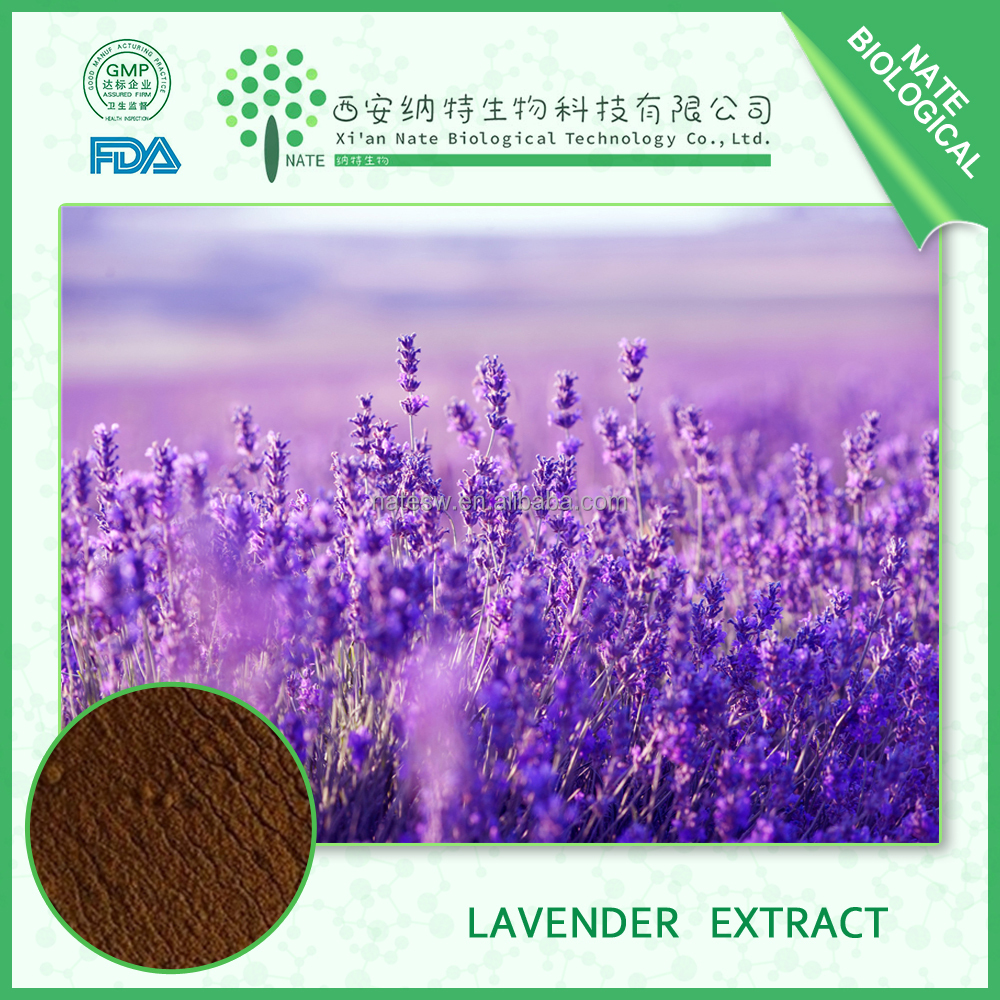 Wholesale lavender flower extract Dried lavender flower powder 4:1
