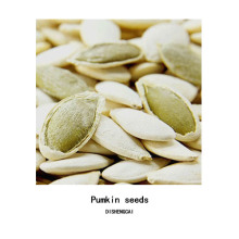 Inner mongolia organic pumpkin seeds for made cake