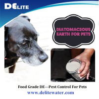 Chemical Free! Food Grade Celite Diatomite Diatomaceous Earth Powder for Natural Flea, Bed Bug, Termite Control