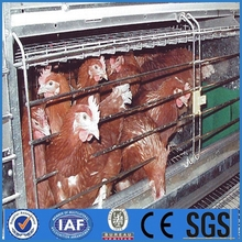 Egg Production Chicken Battery Cage for Poultry Farm