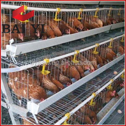 Chicken cages layer poultry farm house design in nairobi kenya