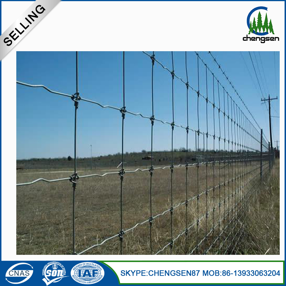 High Quality Galvanized Hexagonal Wire Mesh for chicken coop